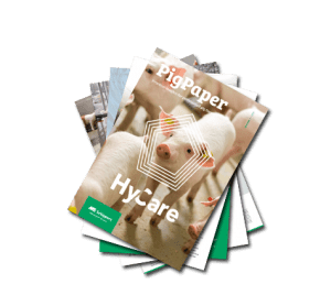 PigPaper download